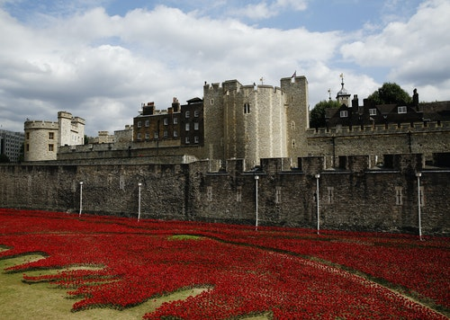 The Tower of London's 'Blood Swept Lands and Seas of Red' poppy installation to commemorate the 100th anniversary of the outbreak of World War One, is seen in London