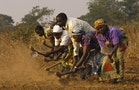 Field Notes from Rural Africa: How Money-Hungry Communities Kill off Informal Loans