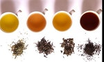 Why China Is Right to Dispense with Its Tea Masters
