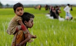 Rohingya Face Conflux of Conflict, Development and Disaster