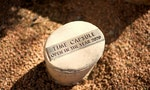 The Best Way to Find a Time Capsule