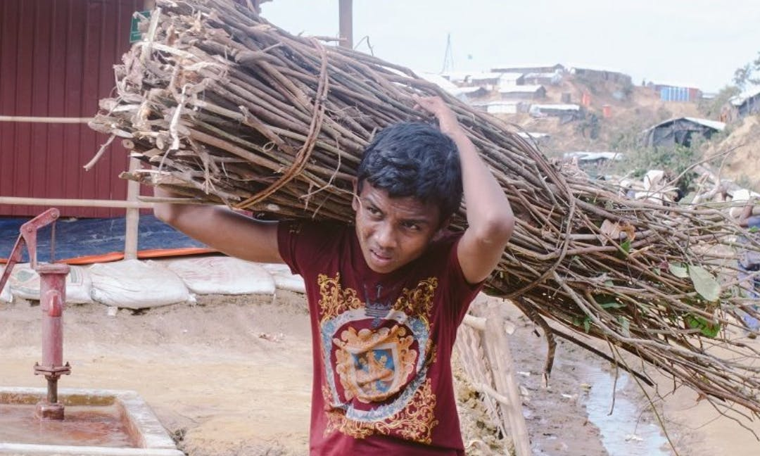 Rohingya Refugee Camps Are Stripping Forests Bare