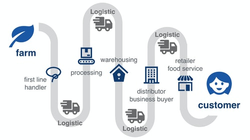 graphic_food_supply_chain