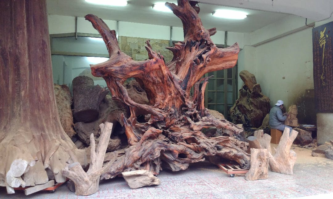 Contraband for Sale: How Poachers Supply Sanyi's Thriving Wood Art Market