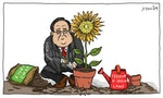 CARTOON: Sunflowers Bask in Judicial Blessing