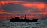 The South Atlantic is a Scrum of the World's Illegal Fishing Vessels