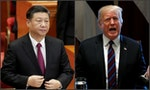 Who Won the US-China Trade War? Vietnam
