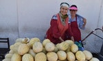 Central Asia's Ancient Silk Road Shaped Our Modern Diet, Study Shows