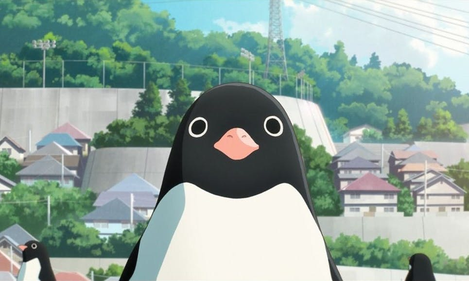FILM REVIEW: 'Penguin Highway' Is a Psychedelic Sci-fi Bildungsroman