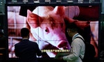 Chinese Pork Prices Doubled Ahead of New Year's Celebrations