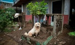 Why Deadly Philippine Super Typhoon Ended up Sparing Lives