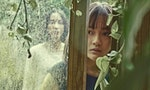 6 Best Taiwanese Films to Watch on Netflix During Quarantine